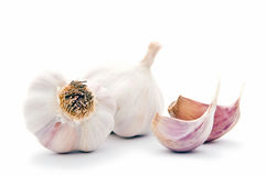 Garlic cloves with bulbs Stock Image