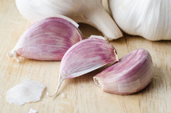 Garlic Cloves and Bulbs Close Up Stock Photography