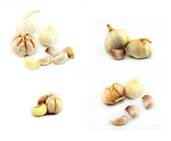 Garlic. Cloves and bulbs isolated on white royalty free stock image