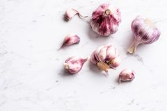 Garlic Cloves and Bulbs on white marble board.  stock photography