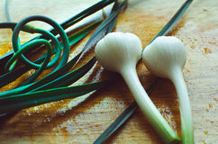 Garlic cloves on a cutting board Royalty Free Stock Photography