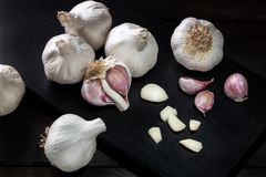 Garlic still life low key photography. Dark background Close up stock photography