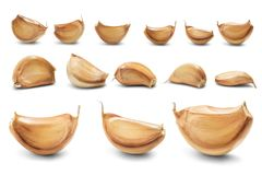 Garlic cloves isolated Stock Photos