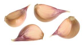 Garlic cloves isolated on white background. set Royalty Free Stock Images