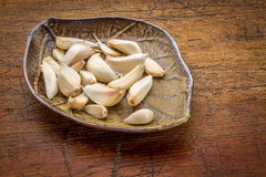 Garlic cloves on a leaf bowl Royalty Free Stock Images
