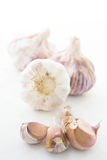 Garlic cloves  over white Royalty Free Stock Photos