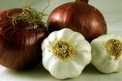 Garlic Cloves and Red Onions. Close-up of garlic cloves and red onions Stock Images