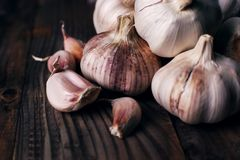 Garlic cloves on rustic wooden table. Vitamin healthy food spice image. Spicy cooking ingredient picture. Garlic cloves rustic wooden table. Vitamin healthy food royalty free stock photo