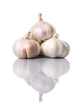 Garlic Cloves VII Stock Photos