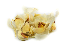 Garlic cloves Stock Photos