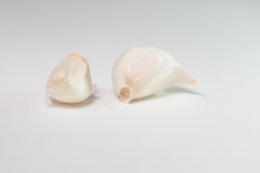 Garlic cloves. With white background Royalty Free Stock Photos