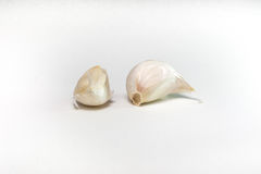 Garlic cloves. With white background Stock Image