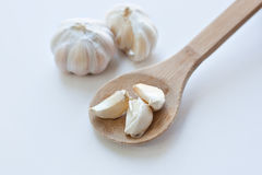 Garlic cloves in wooden cooking spoon Royalty Free Stock Photo
