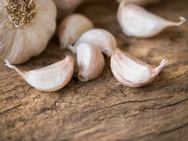 Garlic cloves. Royalty Free Stock Photography