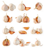 Garlic collection Royalty Free Stock Photo