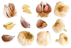 Garlic collection Royalty Free Stock Photos