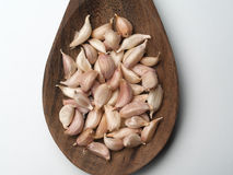 Garlic , Cooking spices Royalty Free Stock Image