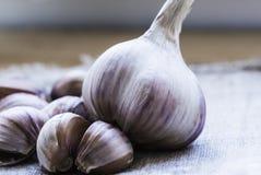 garlic Cravos-da-?ndia de alho e bulbo do alho na serapilheira do vintage Bulbos do alho com os cravos-da-?ndia no fundo de serap imagens de stock royalty free