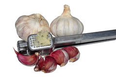 Garlic And Crusher Royalty Free Stock Photography