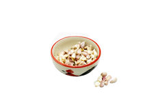 Garlic in a cup. More Garlic in a cup Royalty Free Stock Photos