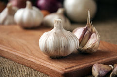Garlic on cutting board , close-up on sacking. burlap background Stock Images