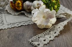 Garlic  with flowers and  linen lace. Garlic decorated with dried  flowers and  green leaf of the plant ,close up Royalty Free Stock Photo