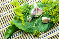Garlic, dill and horseradish on a napkin. Garlic, dill and horseradish on a bamboo napkin royalty free stock photos