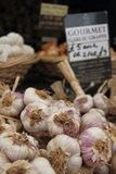 Garlic on display Royalty Free Stock Photos