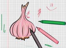 Garlic drawn on paper illustration Royalty Free Stock Photos
