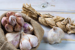 Garlic. Dried French garlic. Red garlic. Violet garlic.Garlic ba Stock Photography