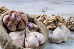 Garlic. Dried French garlic. Red garlic. Violet garlic.Garlic ba Royalty Free Stock Photography