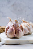 Garlic. Dried French garlic. Red garlic. Violet garlic.Garlic ba Stock Image