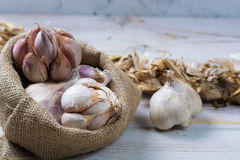 Garlic. Dried French garlic. Red garlic. Violet garlic.Garlic ba Royalty Free Stock Image