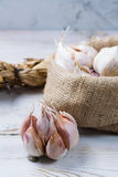Garlic. Dried French garlic. Red garlic. Violet garlic.Garlic ba Stock Images