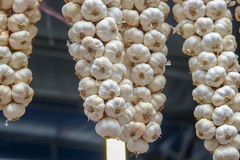 Garlic. Dry hanging in market selective focus Stock Images