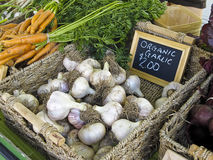 Garlic at Farmers' Market Stock Image