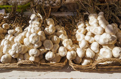Garlic at Farmers Market Stock Photo