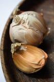 Garlic fellas royalty free stock photo