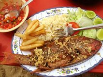 Garlic Fish Platter Royalty Free Stock Photos
