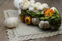 Garlic  with flowers and  linen napkin. Garlic decorated with dried  flowers and  green leaf of the plant ,close up Stock Photography