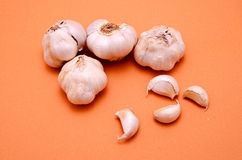 Garlic. In the foreground on colored background Stock Photos