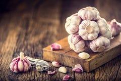 Garlic. Fresh garlic bulbs on old wooden board. Red violet garlic Royalty Free Stock Image