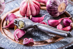 Garlic. Fresh garlic. Red garlic. Garlic press. Violet garlic.Garlic background. garlic bulbs Royalty Free Stock Photo