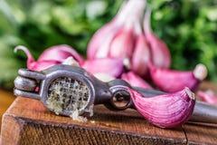 Garlic. Fresh garlic. Red garlic. Garlic press. Violet garlic.Garlic background. garlic bulbs Royalty Free Stock Photo