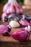 Garlic. Fresh garlic. Red garlic. Garlic press. Violet garlic.Garlic background. garlic bulbs Royalty Free Stock Photography