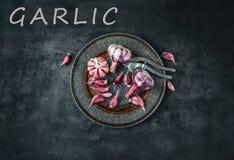 Garlic. Fresh garlic. Red garlic. Garlic press. Violet garlic.Garlic background. garlic bulbs Stock Photos