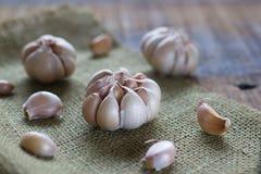 Garlic. Fresh garlic on wood background stock photos
