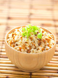 Garlic fried rice Stock Photography