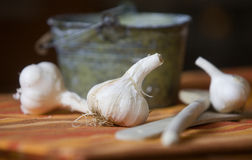 Garlic in front of small bucket Royalty Free Stock Images