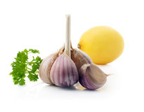 Garlic fruit with parsley. Stock Photos